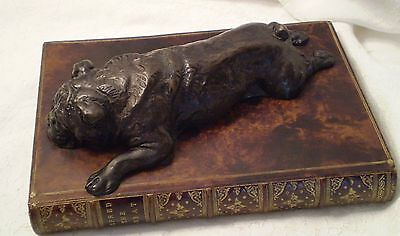 Dog Boxer Bulldog on Book Paperweight Original Bookworks OBW England