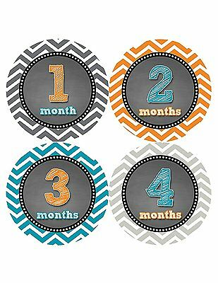 Months in Motion 421 Monthly Baby Stickers Baby Boy Month 1-12 Milestone Age