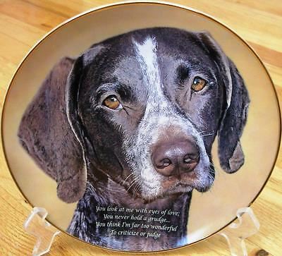 Danbury Mint EYES OF LOVE German Shorthaired Pointer Limited Edition Plate