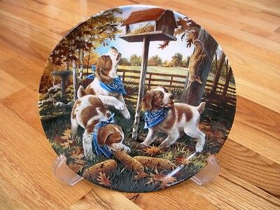 RARE Bradford Unexpected Guests Brittany Spaniel Plate