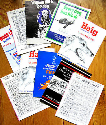 NOW JUST 99p EACH FOR 10 x BIG RACES @ LONDON WHITE CITY Greyhound DOG Racecards