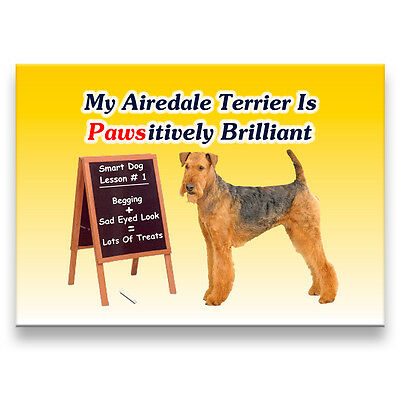 AIREDALE TERRIER Pawsitively Brilliant FRIDGE MAGNET Dog