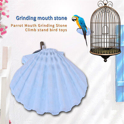 Pet Bird Parrot Chew Bite Shell Shape Toys Paw Grinding Stand Cage Clean Tools