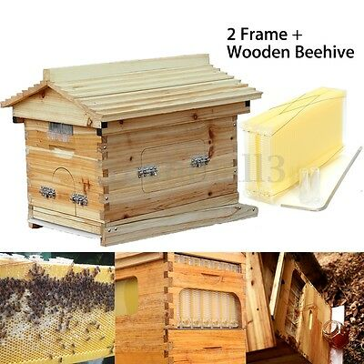 2 Set Bee Auto Move Down Raw Honey Frames + Wooden Beekeeping Beehive Hive house