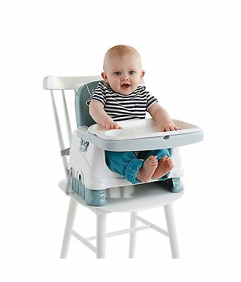 Fisher-Price Booster Seat Blue New