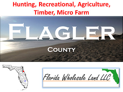 5 Flagler County Properties For Sale!!! Buy Wholesale Land Now!!!