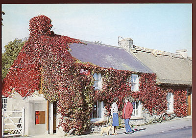Lisbane Post Office Country Down Postcard FDI Used #C11198