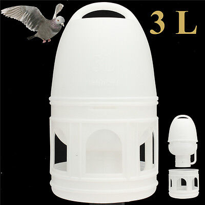 3L Removeble White Plastic 3000ML Drinker With Handle For Pigeons Bird Supplies