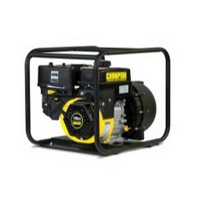 "Champion Power Equipment 66526 2"" Chemical Pump"