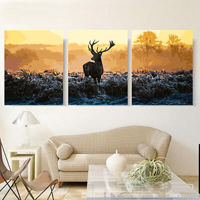 "20x20"" Three Parts DIY Acrylic Paint By Number kit Oil Painting Deer Scenery 887"