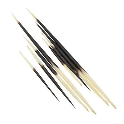 DIY Porcupine Quills Jewelry Hair Stick Craft Fishing Float Weaving Accessories