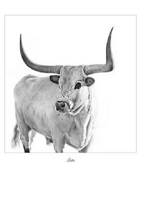 """Lester"" 5X7 Mini Print ~ ROBYN COOK PENCIL ART DRAWING ~ Longhorn Bull ~"