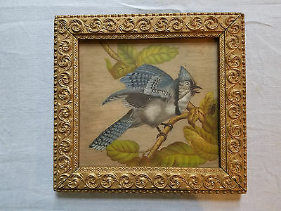 Antique painting Blue Jay 1876 Bird painted on board