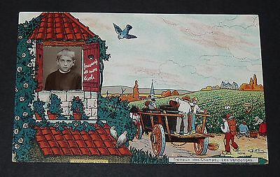 Rare Cpa Carte Postale 1910 Montage Photo Ecole Travaux Champs Vendanges