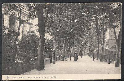 Leicestershire Postcard - Leicester, New Walk and Museum   BH6506