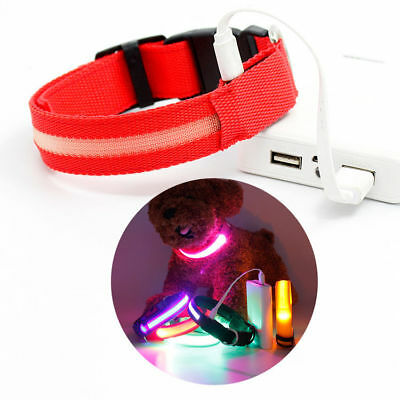 USB Chargeable LED Collar COLOR Light Up Pet Dog Cat Neck Night Flash Safety NEW