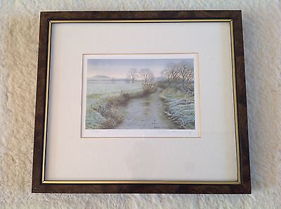 Stephen Townsend Limited Edition Signed Print 293/850 Frosty Stream Scene