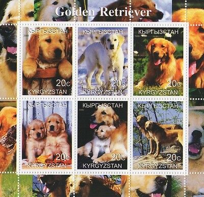 Golden Retriever Dog Animal And Puppies Kyrgyzstan 2000 Mnh Stamp Sheetlet