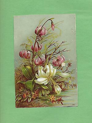 Gorgeous FLOWERS On WOOLSON SPICE CO. LION COFFEE Victorian Trade Card