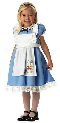 Lil Alice In Wonderland Storybook Fairytale Dress Up Toddler Girl Costume