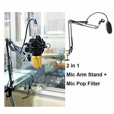 Studio Microphone Stand Mic Portable Black Maneuverable Arm Support+ Pop Filter