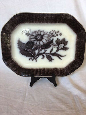 Antique English Ironstone Mulberry Flora Pattern Platter