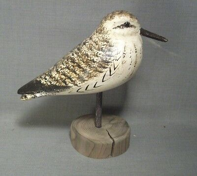 Neat Little Sandpiper Shorebird Decoy by Ken Kirby