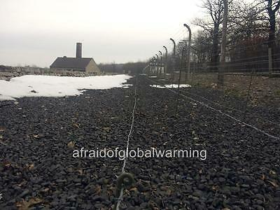 Photo. ca 2008. Buchenwald Concentration Camp - Barbed Wire Fence & Crematorium
