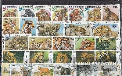 Thematics 50 different Wildcats stamps  in complete Expenditure