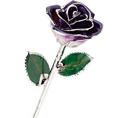 """Purple Passion Rose trimmed in Sterling Silver Real Long Stem Forever Rose 11.5"""""""