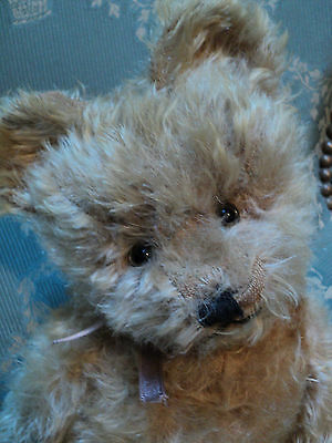 Ours Ancien Anglais, Teddy Bear, Ours Ancien Collection, Vieille Peluche