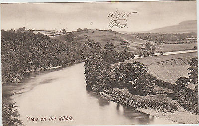 View on the Ribble Postcard1905 - Frith's