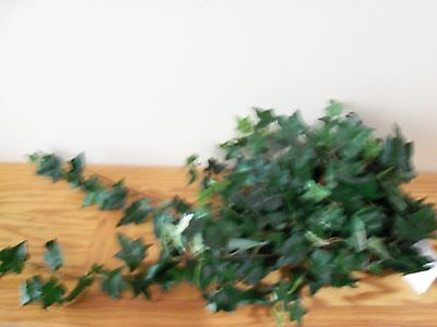 """Homco Home Interiors Needle Point Trailing Ivy Bush """"New"""""""