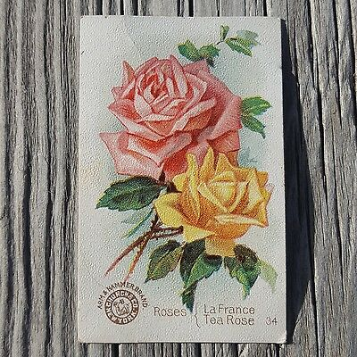 Vintage Arm and Hammer Brand Trade Card Beautiful Flowers Series No. 34 Roses