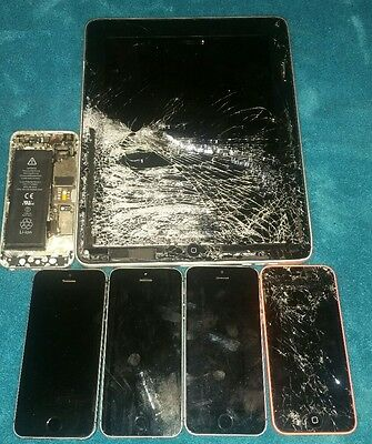 Apple Products Lot of 6 iPhones/iPad
