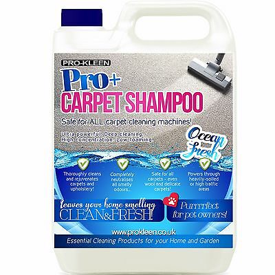 Professional Carpet Cleaning Solution Shampoo Pet Odour Remover Cleaner 5L