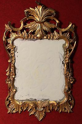 BELLA MIRROR CARVED WOOD GOLDEN PERIOD half '900 (H 113 cm) PARINO
