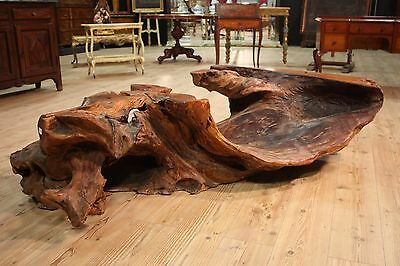 Grande Root Table Low Living Room Indonesia Period '900 (L 180 Cm) Parino