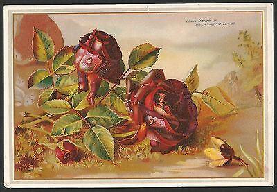 Large Victorian Chromolithograph Trading Card, Union Pacific Tea Co, New York