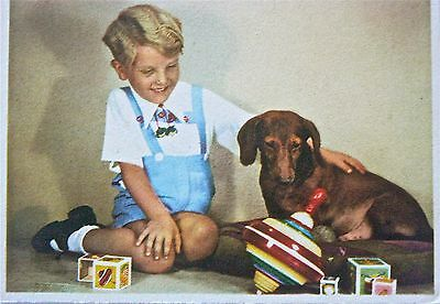 Postcard.dogs.dachshunds.'yes..very Nice. But What Can I Do With It?'older Card