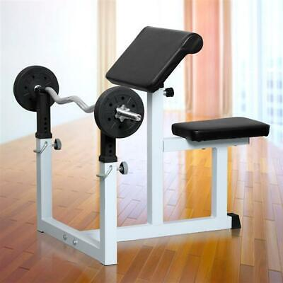 Commercial Preacher Arm Curl Weight Bench Home Gym Exercise Dumbbell Biceps