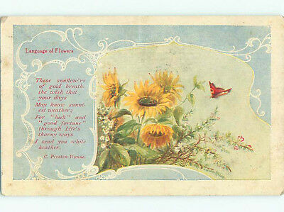 Pre-Linen signed LANGUAGE OF FLOWERS - PRESTON WYNNE QUOTE WITH BUTTERFLY k4654