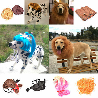 Pet Costume Lion Mane Wig with Ears for Cat Dog Cosplay Clothes Fancy Dress up