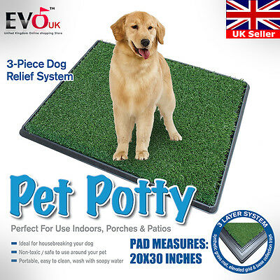 Indoor Pet Toilet Dog Grass Mat Restroom Potty Training Loo Pad withTray 20X30