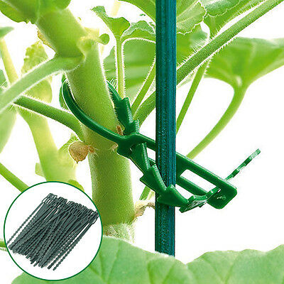 50Pcs Reusable Garden Plastic Ties Plant Cable Adjustable Tree Climbing Support
