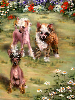 Chinese Crested in field of flowers print dog art matted #1 of 250
