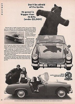 1966 MG Sprite It's Growl Is Bigger Than Its Bite Man In Bear Suit Print Ad