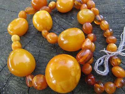 34g old Beautiful buterscotch baltic Natural Amber Beads Necklace