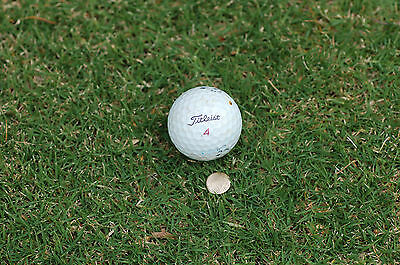 Golf Putter Lifetime Golf Ball Marker  Fits All Putters Gold Or Silver Only