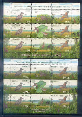 JOINT  2007  BELARUS -  LITHUANIA  MNH   2   MiniSheet  SC=625,848  BIRDS